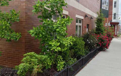 fv_east_landscaping